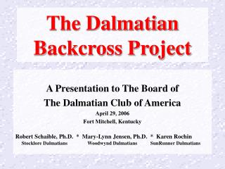 The Dalmatian  Backcross Project