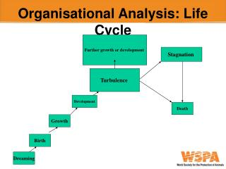 Organisational Analysis: Life Cycle