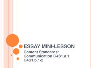 ESSAY MINI-LESSON