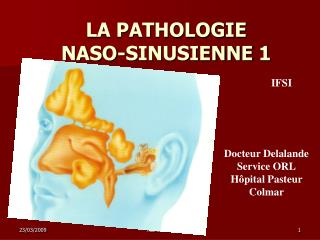 LA PATHOLOGIE  NASO-SINUSIENNE 1