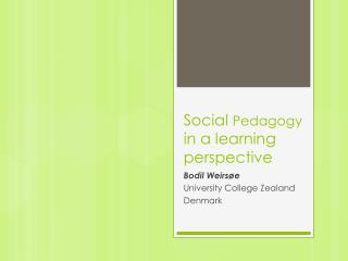 Social  Pedagogy  in a  learning perspective