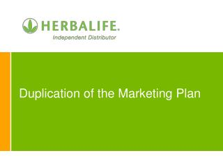 Duplication of the Marketing Plan