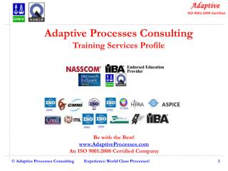 Adaptive Processes Consulting Training Services Profile