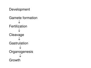 Development Gamete formation  Fertilization 	 Cleavage 	 Gastrulation 	  Organogenesis 	  Growth