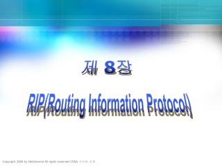 RIP(Routing Information Protocol)