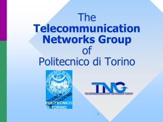 The  Telecommunication  Networks Group of  Politecnico di Torino