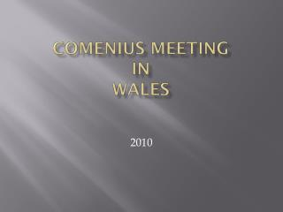 Comenius meeting in  Wales