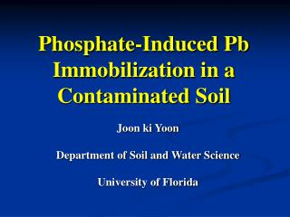 Phosphate-Induced Pb Immobilization in a Contaminated Soil