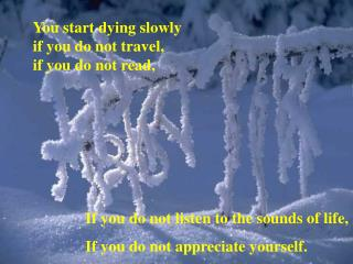 You start dying slowly  if you do not travel, if you do not read,
