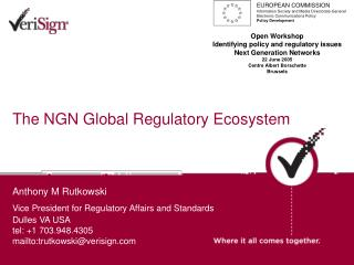 The NGN Global Regulatory Ecosystem