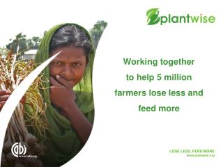 Working together  to help 5 million farmers lose less and feed more