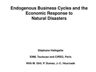 Endogenous Business Cycles and the Economic Response to  Natural Disasters