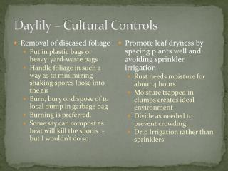 Daylily – Cultural Controls