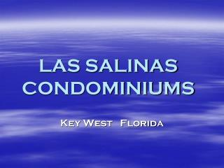 LAS SALINAS CONDOMINIUMS