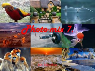 Photo-mix 7.