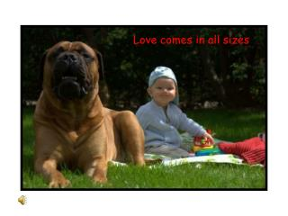 Love comes in all sizes
