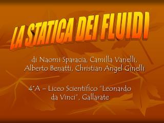 di Naomi Sparacia, Camilla Vanelli, Alberto Benatti, Christian Angel Ginelli