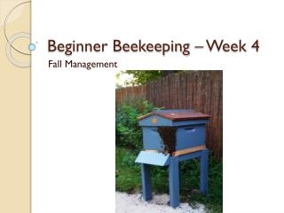 Beginner Beekeeping – Week 4