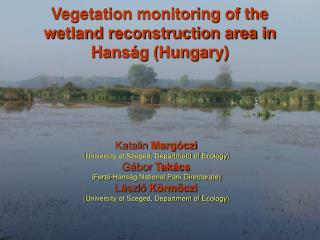 Vegetation monitoring of the wetland reconstruction area in Hanság (Hungary)