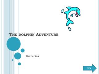 The dolphin Adventure