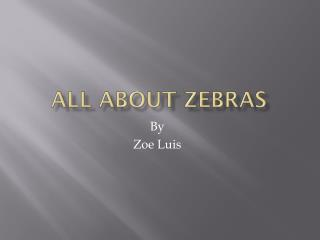 All about Zebras