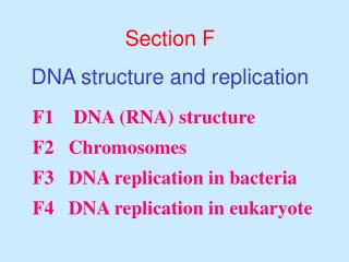 Section F DNA structure and replication