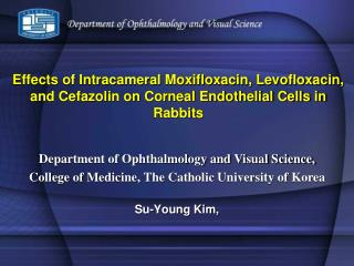 Effects of Intracameral Moxifloxacin, Levofloxacin, and Cefazolin on Corneal Endothelial Cells in Rabbits