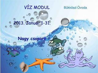 VÍZ MODUL 2013. Január 1-31. Nagy csoport
