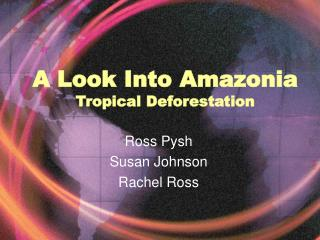 A Look Into Amazonia Tropical Deforestation