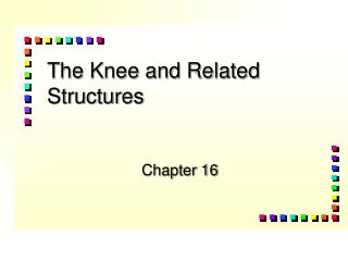 The Knee and Related Structures