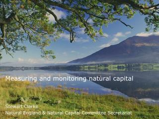 Measuring and monitoring natural capital