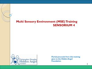 Multi Sensory Environment (MSE ) Training 			SENSORIUM 4