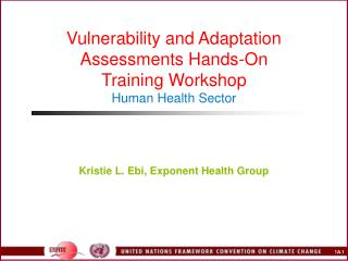 Vulnerability and Adaptation Assessments Hands-On  Training Workshop Human Health Sector