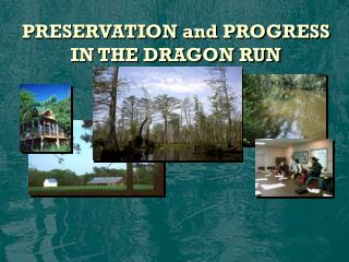 PRESERVATION and PROGRESS IN THE DRAGON RUN