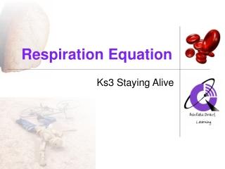 Respiration Equation