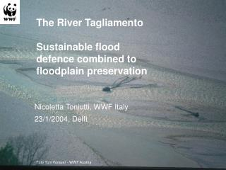 The  R iver Tagliamento Sustainable flood defence combined to floodplain preservation