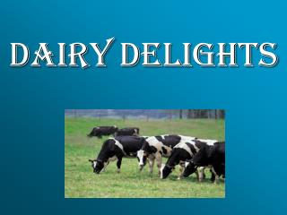 DAIRY DELIGHTS