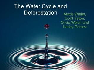 The Water Cycle and Deforestation