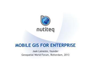 Mobile GIS for enterprise