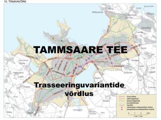 TAMMSAARE TEE