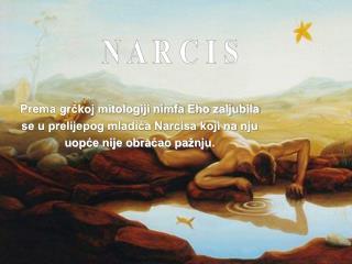 N A R C I S