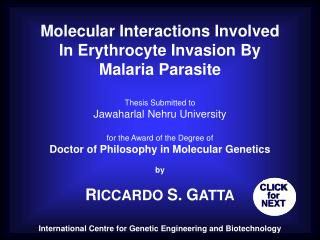Molecular Interactions Involved  In Erythrocyte Invasion By  Malaria Parasite Thesis Submitted to
