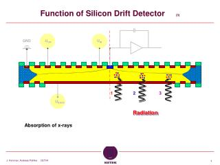 Function of Silicon Drift Detector      (3)