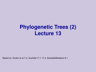Phylogenetic Trees (2) Lecture 13