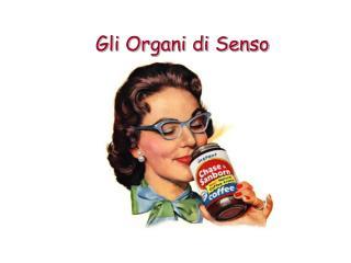 Gli Organi di Senso