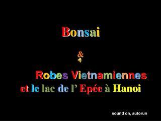 B o n s a i &        R o b e s  V i e t n a m i e n n e s et  le lac  de  l'  Epée  à  Hanoi
