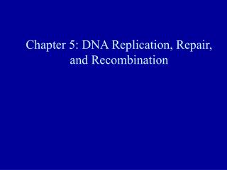 Chapter 5: DNA Replication, Repair, and Recombination