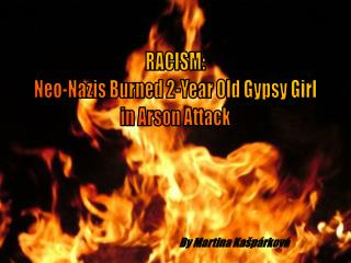 RACISM: Neo-Nazis Burned 2-Year Old Gypsy Girl in Arson Attack
