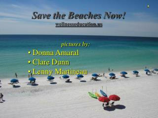 Save the Beaches Now! wellnesseducation