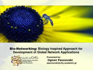 Bio-Networking: Biology Inspired Approach for  Development of Global Network Applications